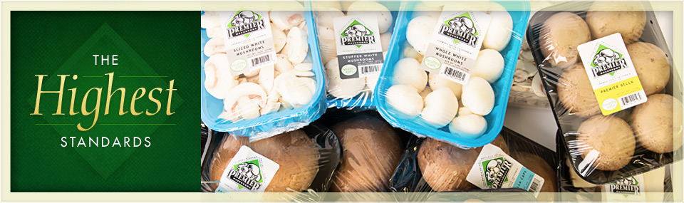different types of packaged premier mushrooms